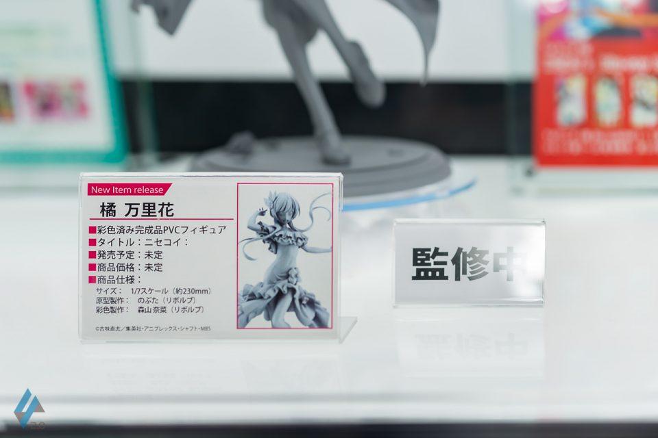 DSC02409 のコピー