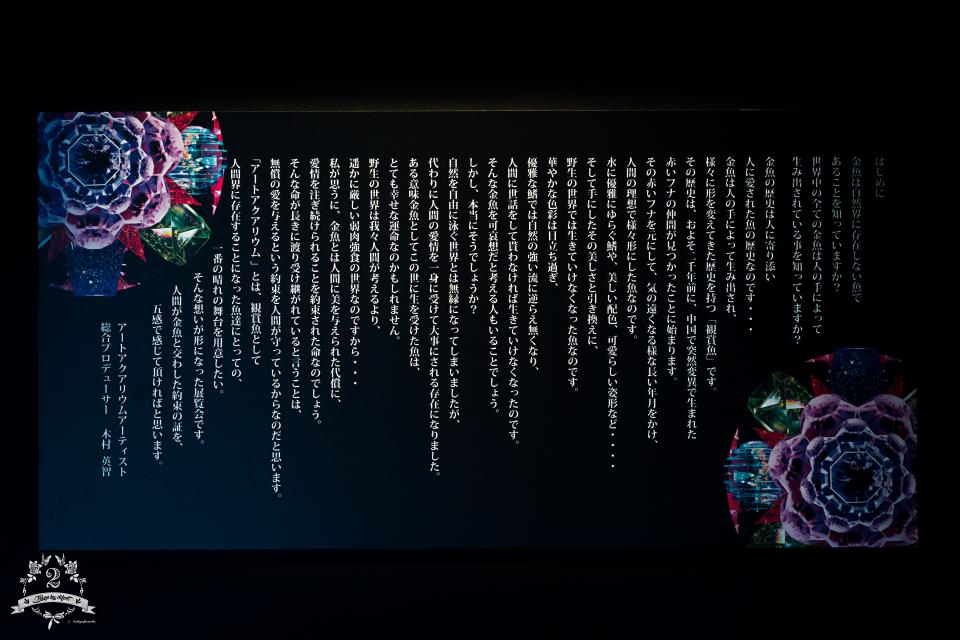DSC04338 のコピー